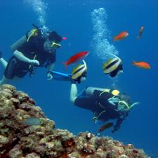 Submarinismo en Ibiza