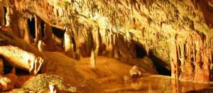 canarabi.com Cuevas san marça
